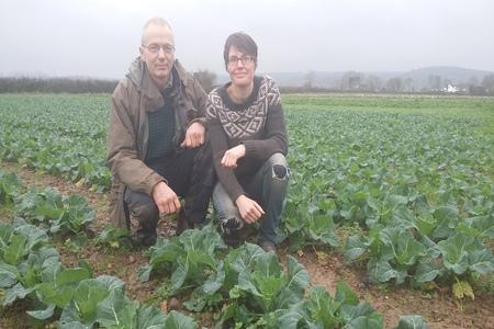 Warm autumns and mild winters mean changes are afoot on one organic farm near Bridgwater